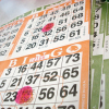 Thumbnail image for Day 258: Bingo!